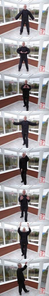 The Five Elements Dance Qigong