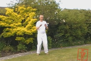 The Qigong for Stress and Anxiety course is based on the exercises that I teach and prescribe to patients who are suffering from either.