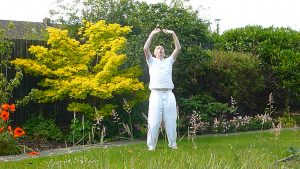 the eight exceptional vessels qigong
