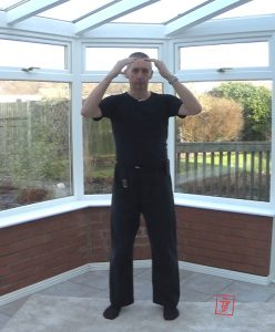Healing with Qigong - working with Metal imbalances in TCM