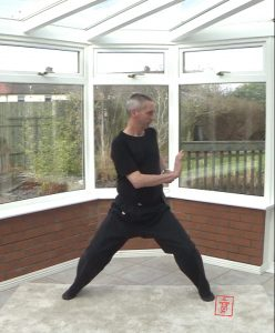 Working with the Yang Meridians - Twisting the Waist and Pushing Palms