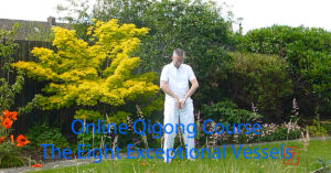 Online Qigong course - The Eight Exceptional Vessels