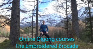 online qigong courses - the Embroidered Brocade