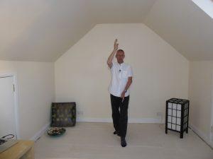 learn Qigong online. The Five Elements Dance.