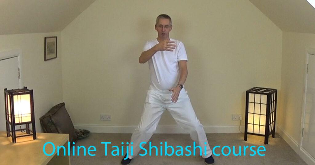 Questions about the Taiji Shibashi